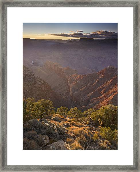 Evening Light At The Grand Canyon Framed Print by Richard Berry