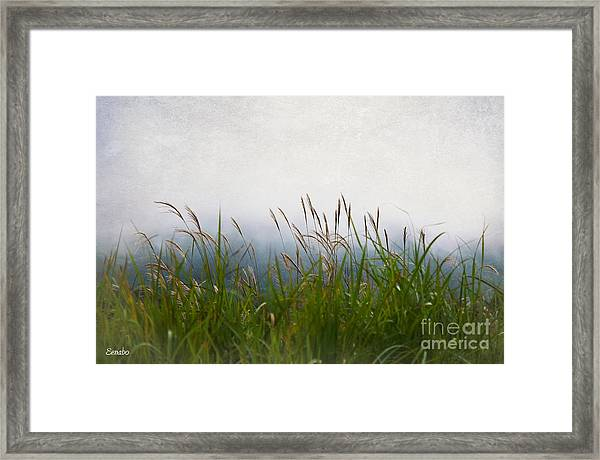 Evening Mist Framed Print