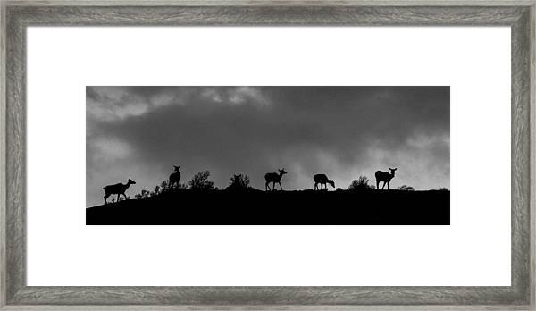 Evening Ridge Framed Print