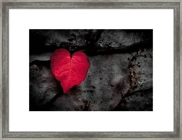 Eventually They Fall - Seize The Moment Framed Print