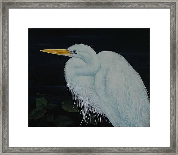 Everglades Angel Framed Print