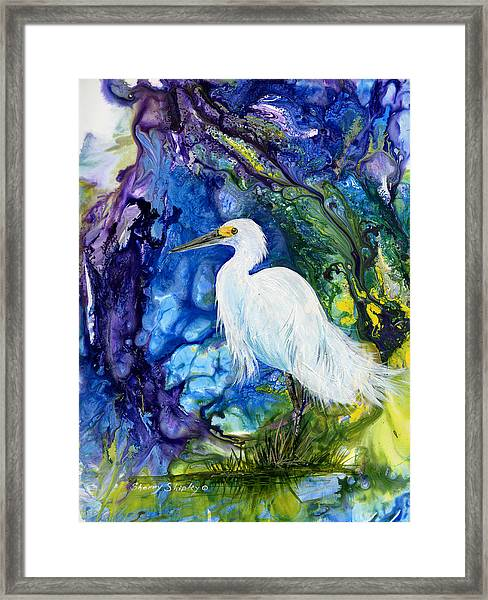 Everglades Fantasy Framed Print