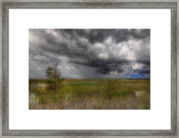 Everglades Storm Framed Print