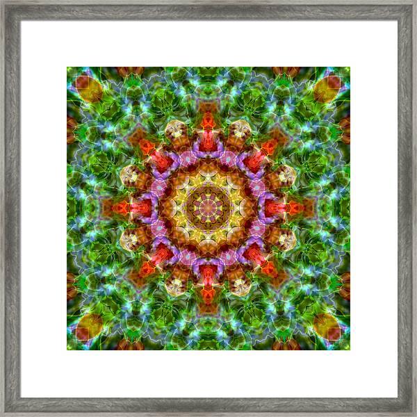 Expression Mandala Framed Print
