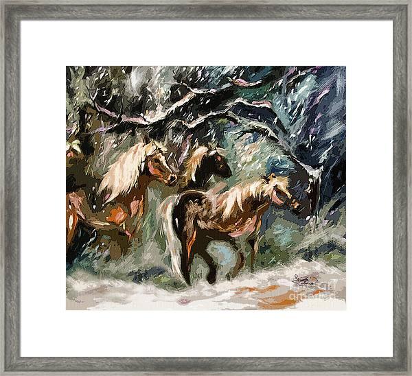 Expressive Haflinger Horses In Snow Storm Framed Print