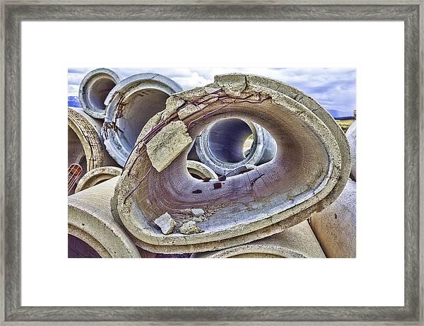 Eye Of The Saur 2 Framed Print