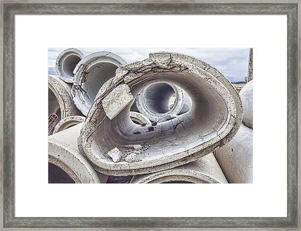 Eye Of The Saur Framed Print