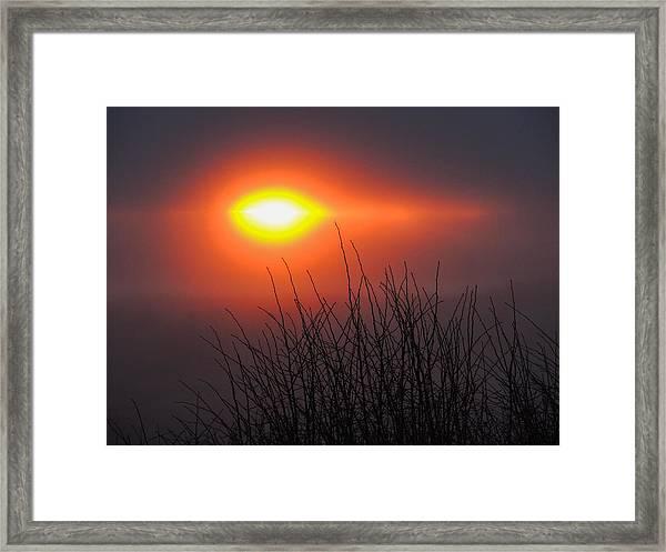 Eye Of Winter Framed Print
