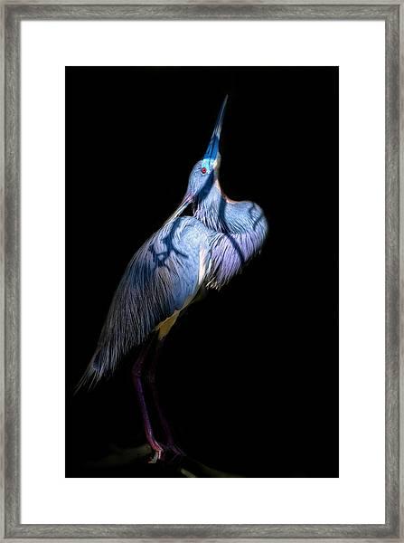 Eye On Heaven Framed Print