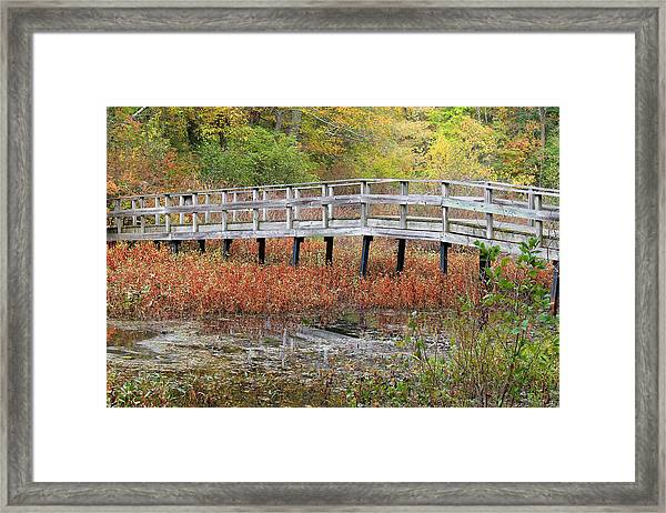 Fable Bridge Framed Print