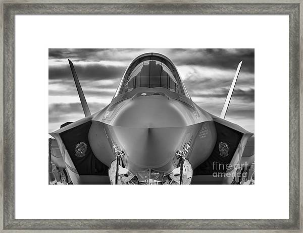 Face To Face With Stealth Framed Print