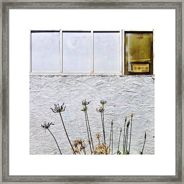 Faded Flowers Framed Print