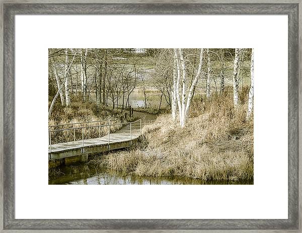 Fading Colors Of Fall Framed Print
