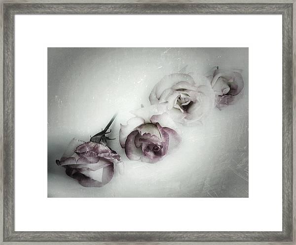 Fading Feelings Framed Print