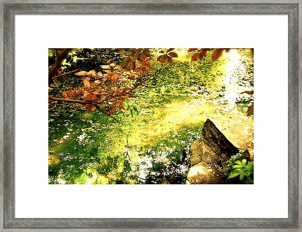Framed Print featuring the photograph Fairies by HweeYen Ong