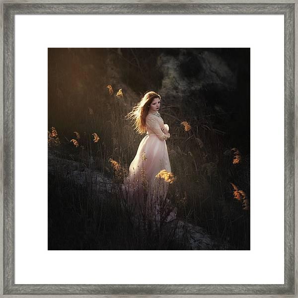 Fairy Framed Print by Paulo Dias