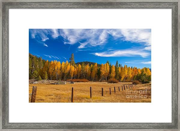 Faithful Fall Framed Print