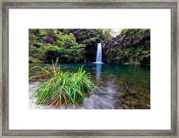 Fall And Pool Framed Print