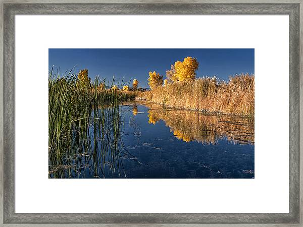 Fall At The Canal Framed Print