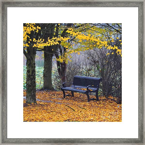 Fall Bench Framed Print