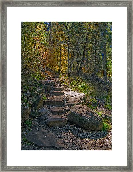 West Fork At Oak Creek Framed Print