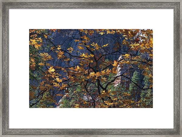 West Fork Tapestry Framed Print