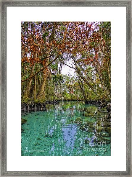 Fall Colors Along Three Sisters Spring Run Framed Print