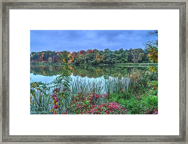 Fall Colors At Blue Hour Near Zegrze Framed Print