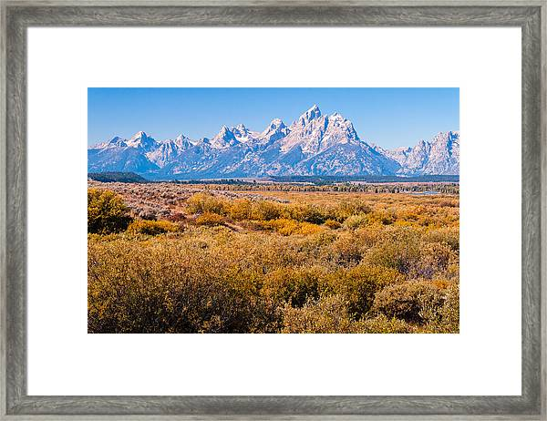 Fall Colors In The Tetons   Framed Print