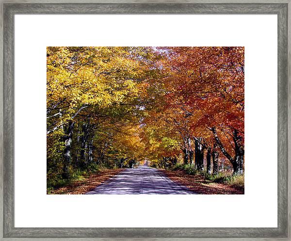 Fall Colors Near Sister Bay Framed Print