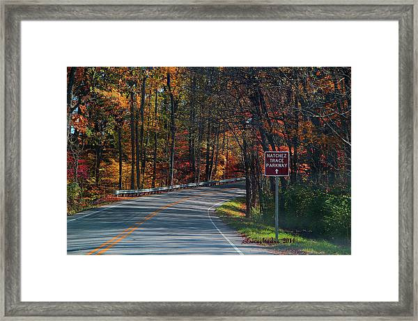 Fall Drive In Tennessee  1 Framed Print