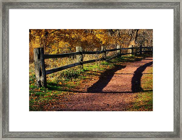 Fall In Chicago Framed Print