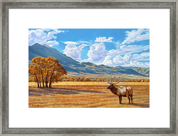 Fall In Paradise Valley Framed Print