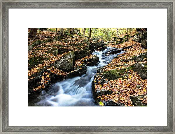 Fall In The Adirondacks Framed Print