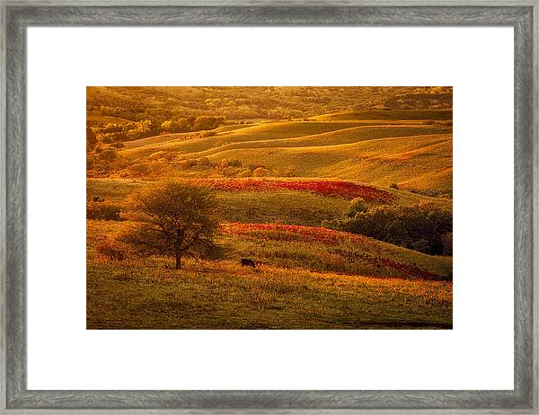Fall In The Flint Hills Framed Print