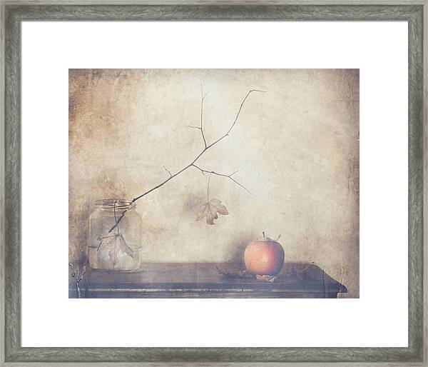 Fall, Leaves, Fall Framed Print