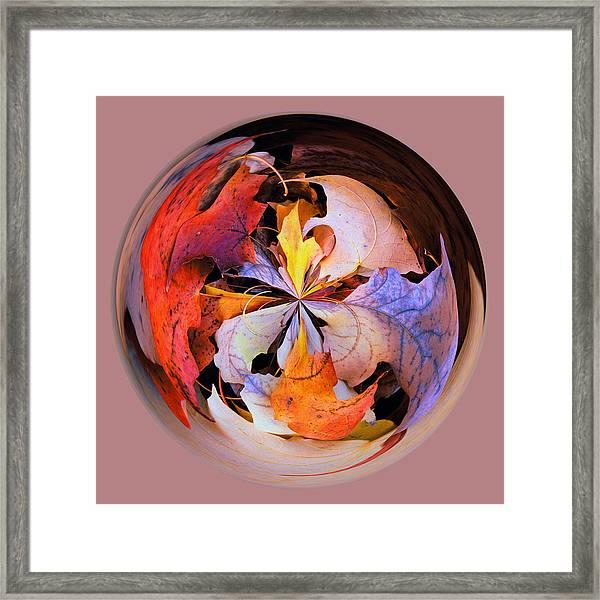 Fall Leaves Orb Framed Print