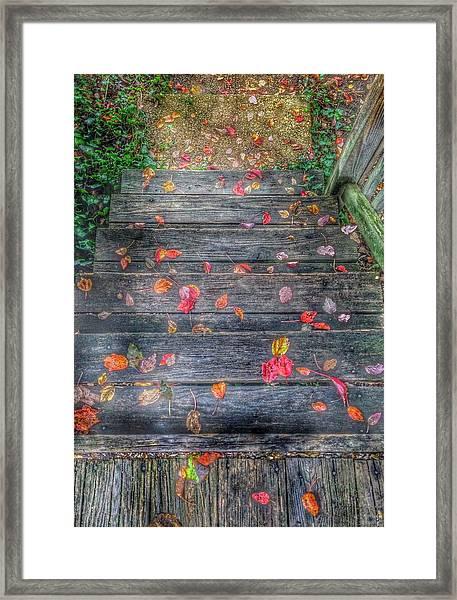 Fall Morning Framed Print
