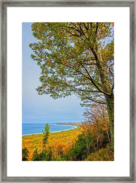 Fall On Alligator Hill Framed Print