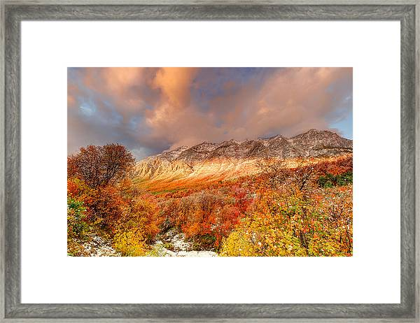 Fall On Display Framed Print