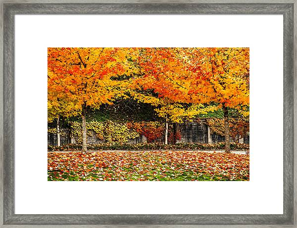 Autumnl Rainbow Framed Print