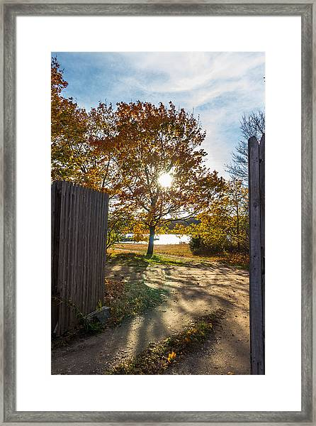 Fall Through The Gate Framed Print