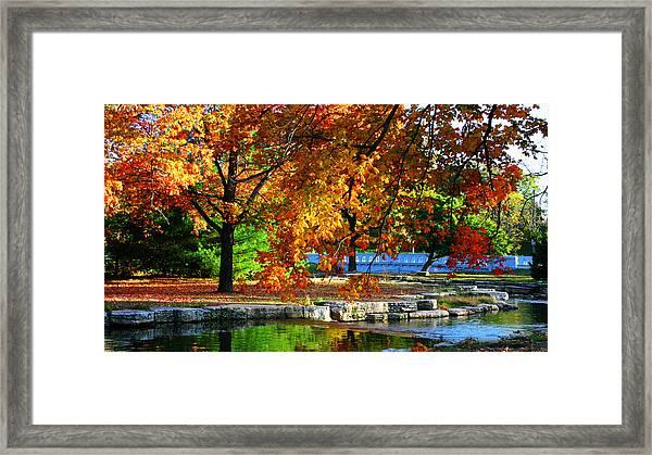 Fall Trees Landscape Stream Framed Print