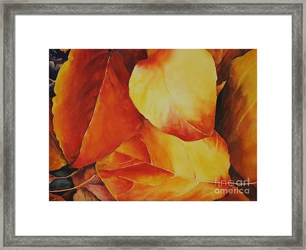 Fallen Colors Framed Print