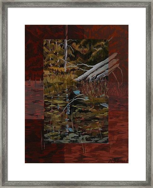 Fallen Trees At The Marsh Framed Print