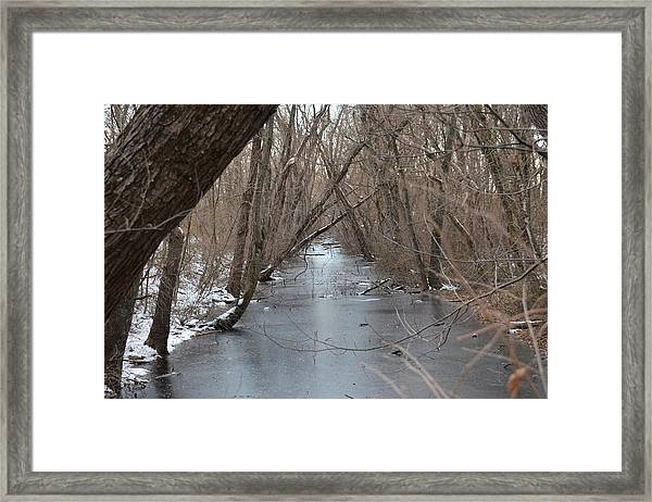 Falling Trees On A Frozen Canal Framed Print by Bill Helman
