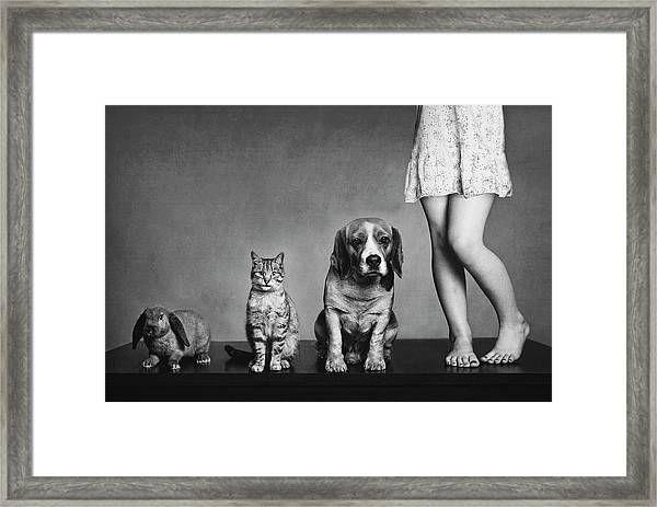 Family Portrait Framed Print by