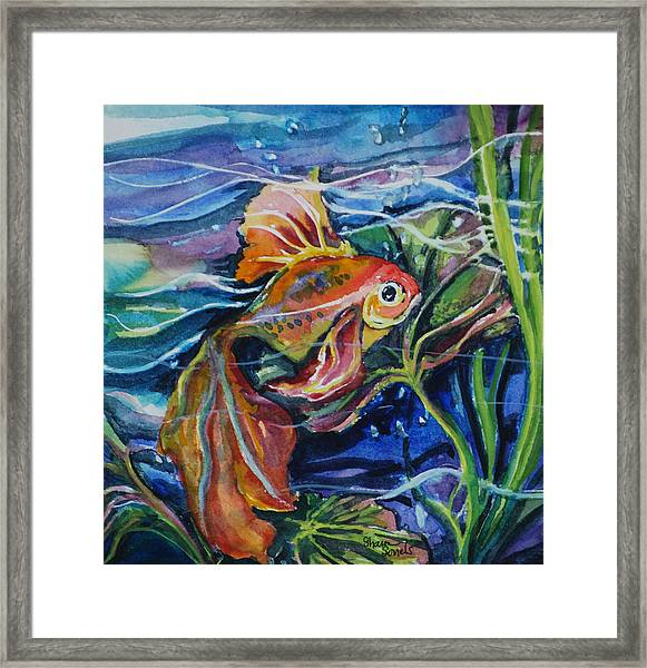Fanciful Fish Framed Print