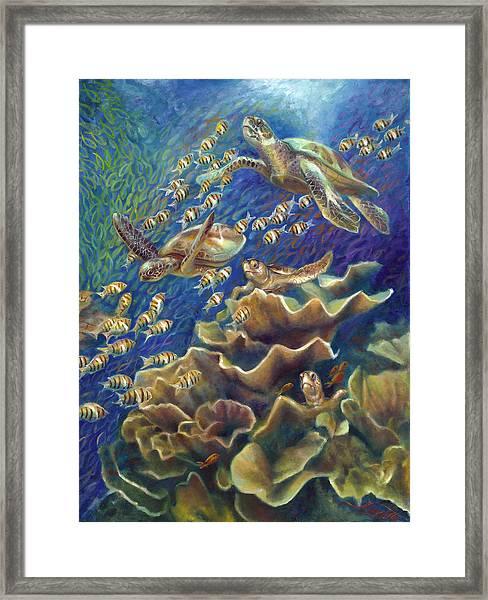 Fantastic Journey - Turtles Framed Print by Nancy Tilles
