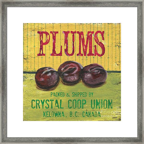 Farm Fresh Fruit 4 Framed Print